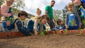 Mehrere Kinder setzen Pflanzen in das Hochbeet